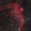 Seagull nebula IC 2177,                                Jenafan