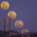 Moonrise Montage,                                Peter Pat