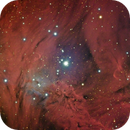 The Fox Fur Nebula,                                Adam Jaffe