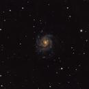 NGC 5457 (M101 Pinwheel Galaxy),                                Daniel Erickson
