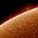 The Sun - Chromospheric Detail,                                Jason Guenzel