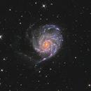 M101 LHaRGB,                                Vandewattyne