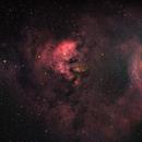 NGC 7822 region,                                Stephen Brown