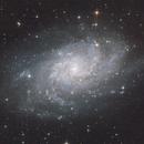 Triangulum Galaxy,                                Vencislav Krumov