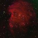 NGC2174,                                Gary McFall
