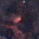 SH2-101 Tulip Nebula,                                Claudio Nunez
