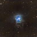 NGC 7023 • Iris Nebula,                                Douglas J Struble