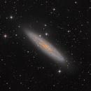 NGC 253,                                Casey Good