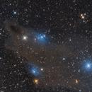 LDN1235 Shark Nebula,                                LAMAGAT Frederic