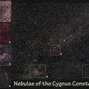 Nebulae of the Cygnus constellation,                                pterodattilo