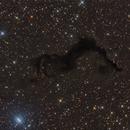 Barnard 174,                                noodle