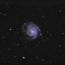 M101 - Pinwheel Galaxy,                                Johannes Schiehsl