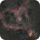 Heart Nebula,                                Ron Krassin