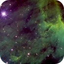Pelican Nebula,                                Colin McGill