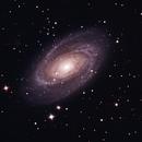 M81,                                Carlo Rocchi