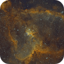 IC1805 - Heart Nebula,                                  Nico Augustin