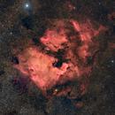 The North America Nebula & Pelican Nebula,                                Prabhu S Kutti