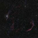 Veil Nebula Complex,                                Scotty Bishop