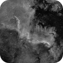 Cygnus Wall,                                Marco van der Kooij