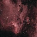 Pelican Nebula HOO,                                Stephen Richards