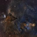 Cone nebula NGC2264 & chritsmas tree cluster HaSHO.,                                lukfer