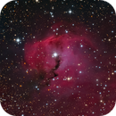 Gum1, the head of the Seagull nebula in LRGB,                                TWFowler