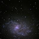 M33 Triangulum Galaxy,                                Stefano Giardinelli