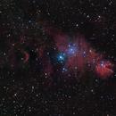 ngc2264 (Christmas Tree nebula) Ha_Ls_HaRGB,                                *philippe Gilberton