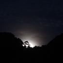 Rising Full Moon,                                astropical