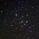 M44 The Beehive,                                Shannon Calvert