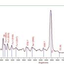 Spectrum of a classical nova in Perseus,                                Johannes D. Clausen