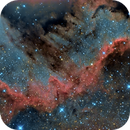 The Wall - Ngc7000 with DLSR,                                Giosi Amante