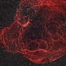 Spaghetti Nebula (Simeis 147, SH2-240),                                Jeffrey Horne