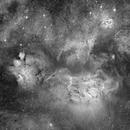 Lagoon and Trifid Nebulae,                                John Gleason