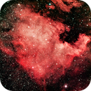 NGC 7000,                                Prea