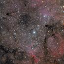 IC 1396 - Elephant trunk nebula,                                PieroRomano