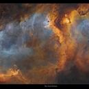 Soul nebula with no stars,                                Metsavainio