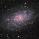 M33 Galassia Del Triangolo,                                Francesco Landi