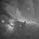 IC434 Ha,                                Joe Beyer