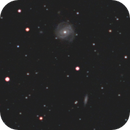 Galaxies M 100 - M 99 - M 98 in Coma Berenices,                                gigiastro