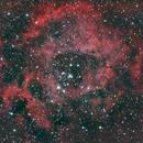 Rosette Nebula & NGC 2244,                                astronut1982