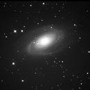 M81,                                L_Shaffer