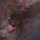 Cygnus Widefield,                                  Liu Zhuokai