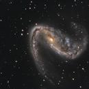 NGC 2442,                    Mark