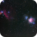 Orion Widefield,                                Poochpa
