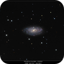NGC3953 in Ursa Major 3/20/2016,                                rigel123