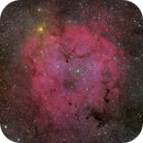 IC 1396 and the Garnet Star,                                Hytham