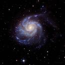 M101 - LRGB,                                Greg Polanski