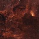 The Tulip Nebula Widefield,                                Adam Jaffe