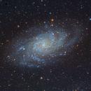 M33 Triangulum galaxy,                                Ricardo Pereira